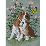 Two Dogs In The Flowers