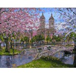 Blooming Cherry Blossom Spring Scenery