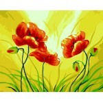 Beautiful Corn Poppy With Bids Artistic