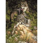 A Pair of wolves Under tree