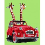 Giraffes In Red Vintage Car