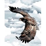 Huge Eagle In Clouds