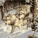 A Pair Of Snow Wolves In The Forest