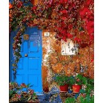A Colorful View Outside The Door