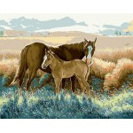 Horse & Baby Beside The Wheat Field