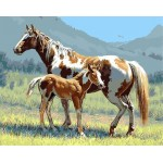 Horse & Baby On Grassland Hand Painted Design