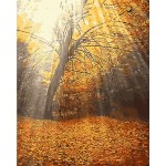 Silent Woods Needlepoint Canvas