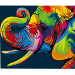 Colorful Elephant Head Hand Painted Design