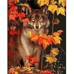 Wolf & Maple Leaves