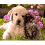 Doggie With Cute Kitty